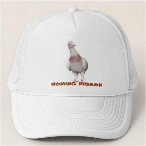 gorra-mirada-curiosa